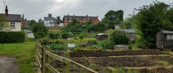 Image: Allotments, Gumley Road